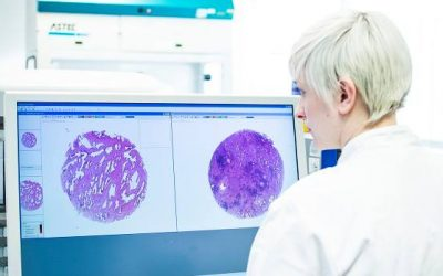 Cancer Research Wales named as charity partner for inaugural Wales STEM Awards